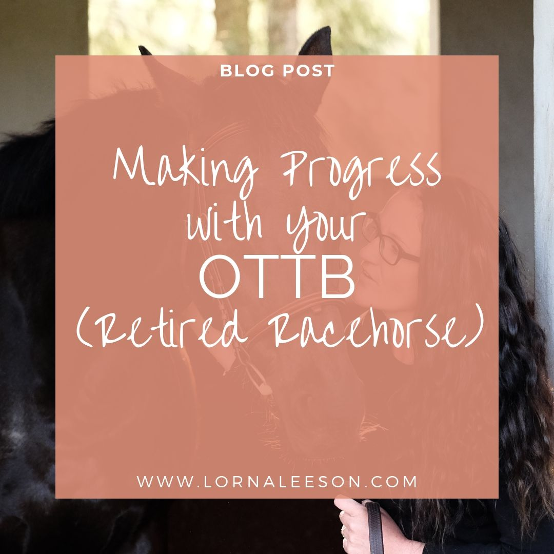 Making Progress with Your OTTB (Retired Racehorse)